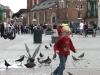 Taubenjagd auf dem Hauptmarkt